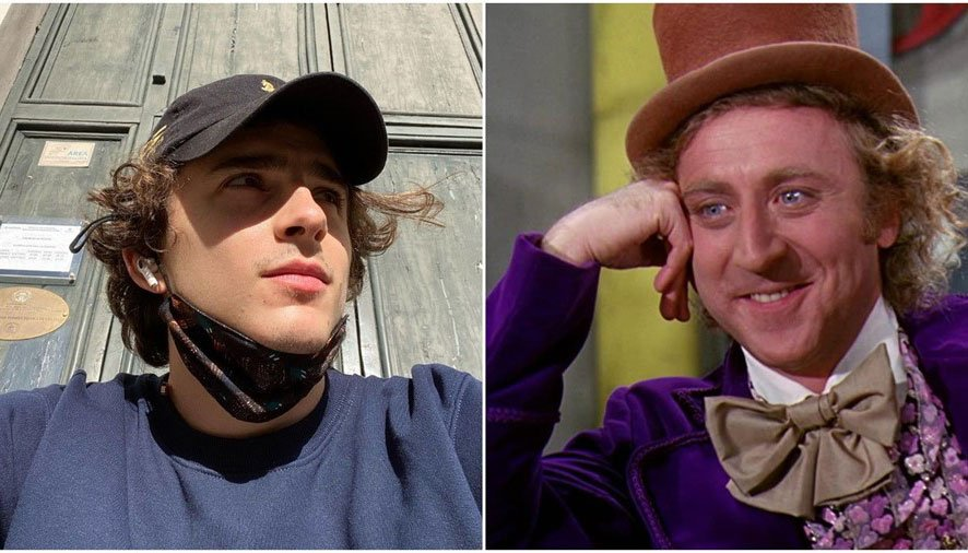 Timothée Chalamet has been cast in the role of young Willy Wonka.