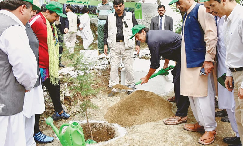 Prime Minister Advises the Nation to Fully Participate in Pakistan's Greening