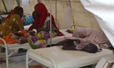 Nearly 2,000 people reportedly died as a result of a cholera pandemic in Nigeria